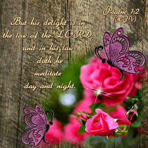 Psalm 1:2 KJV: