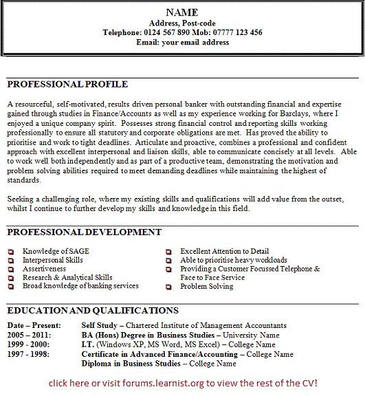 Personal Banker Job Description For Resume Cool And Elegant 11 Ruby Switch Statement Of 40 Hi Example Profile Banking Examples