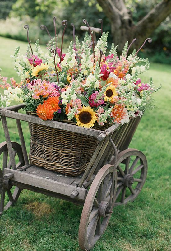 Cart Of Colorful Blooms | Photo By Michele M. Waite | Wedding Flowers |  Pinterest | Goats, Flowers And Gardens