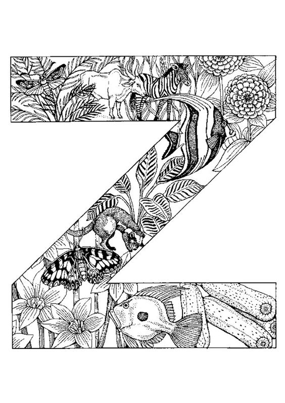 morocco coloring pages - voyage animals and jungles on pinterest