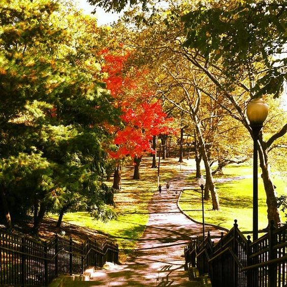 Hudson COunty Park in the fall - Google Search