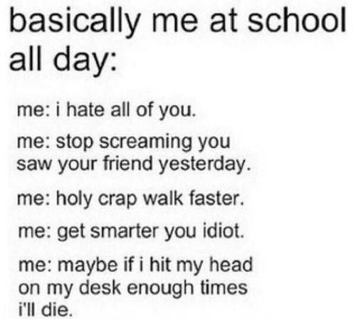 Quotes For My Highschool Friends : Funny school quotes google search