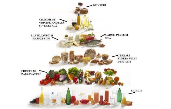 Piramida Alimentară!
