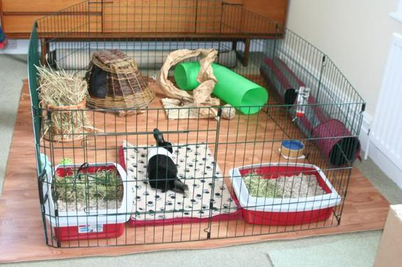 "A relatively standard indoor ""puppy pen"" style setup, providing adequate space for an indoor rabbit."