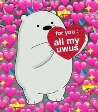 Tags Followforlike Likeforlikes Followforfollowback Likeforlike Tags Followforlike Likeforlikes Fo Cute Love Memes Love Memes Cute Memes