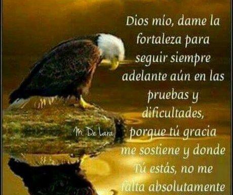 Imagenes Con Frases De Fortaleza Cristianas