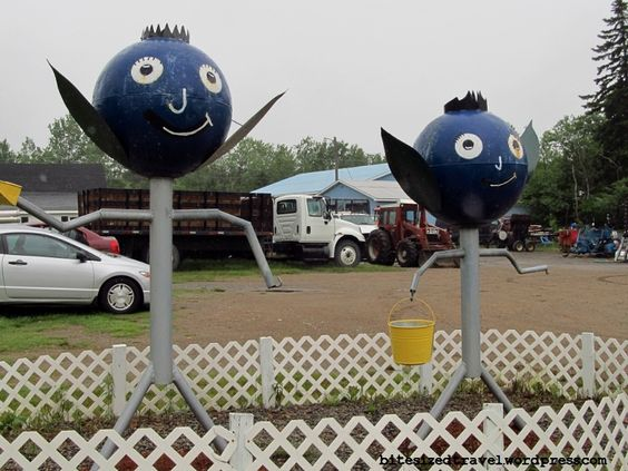 """""""Blueberry King and Queen"""" -- St. George, New Brunswick, Canada."""