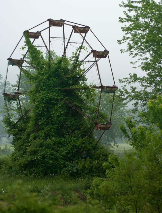 Nature reprend ses droits et gagne son combat contre la civilisation - Grande roue abandonnée
