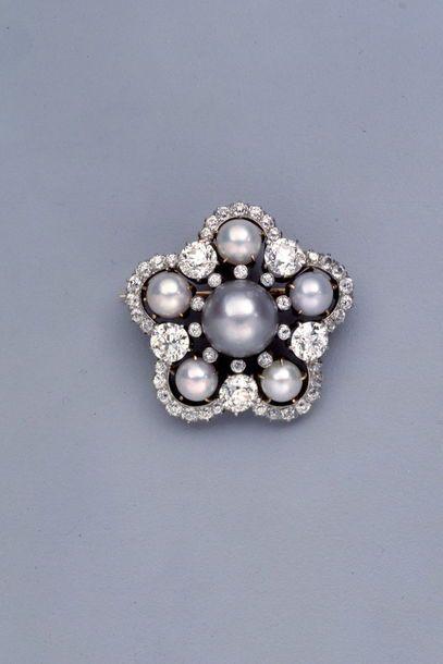 Brosche mit Süßwasserperlen und Diamanten von Tiffany & Co., um 1900-1910