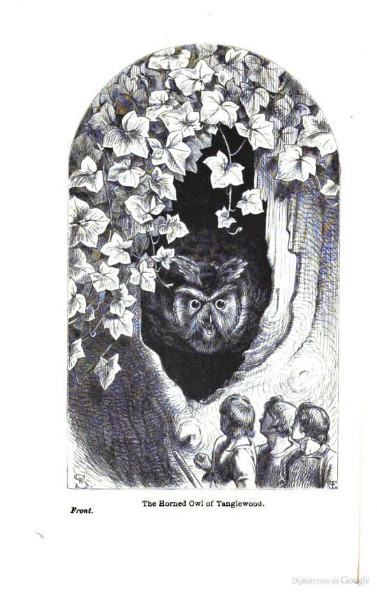 The Horned Owl of Tanglewood. From Holme Lee's Fairy Tales, 1869.