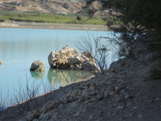 Historia y Evidencias geológicas en el Altiplano  Ec5c1d50212fa946dc8b47e520d67206