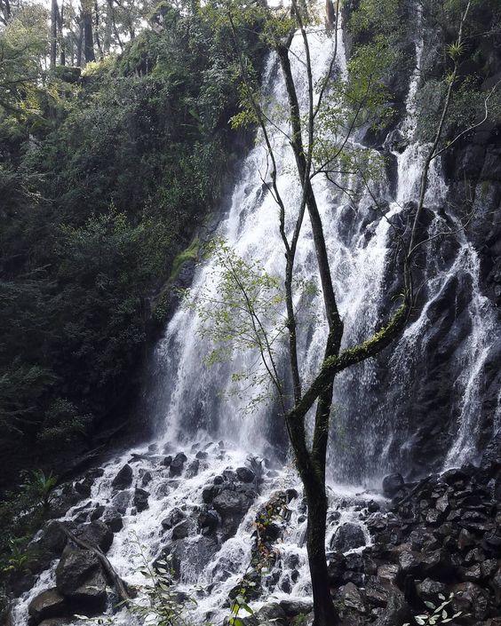 Travel Tip: Waterfalls of Velo de Novia near Valle de Bravo, Mexico. Follow my blog for more at berlinishjournal.com.