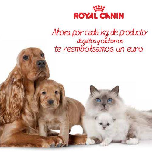 A partir de ahora y sólo hasta el 31/03/14 por cada kg de producto de gatitos y cachorros Royal Canin que compres, te reembolsamos 1€. (Productos para gatitos y cachorros en envases a partir de 1kg y limitada a los primeros 50.000 kg y a un reembolso por ticket de compra). Cómo participar en: www.gatitosycachorros.es, 902518929 y folleto promocional en establecimientos.