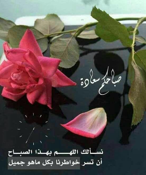 صباح الخير Good Night Messages Good Morning Images Good Morning Arabic