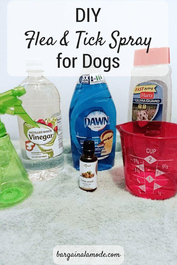 Account Suspended Flea And Tick Spray Flea And Tick Flea Shampoo For Dogs