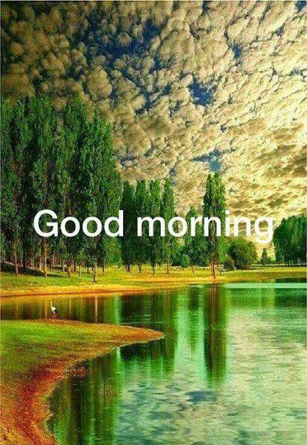 Good Morning Pictures 2018 In Hindi Punjabi English In 2020 Morning Pictures Good Morning Picture Good Morning Photos