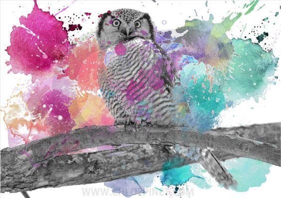 Buho, buho para imprimir,  poster de buho, dibujo de buho, arte digital, ilustraciones de animales, animales coloridos, aves, pajaros,