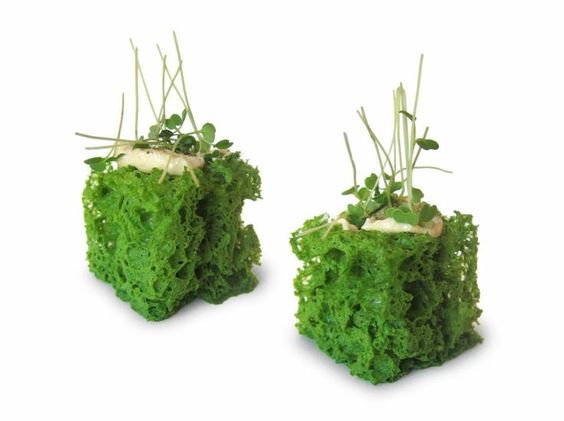 Enrico Crippa. green food. appetizer modern innovative:
