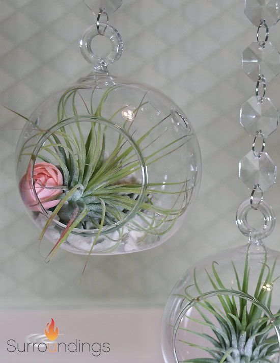 Decorate With Air Plants In Hanging Bubble Vases For A Light Airy Display Add A Little Bloom O Floating Candle Centerpieces Pink Centerpieces Centerpiece Kits