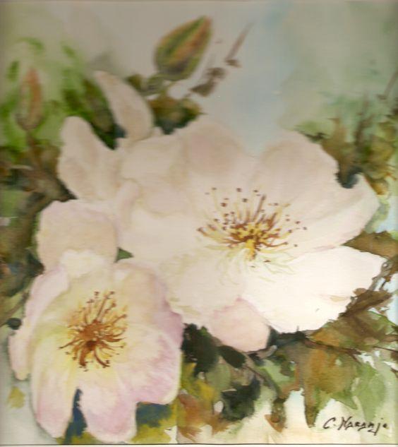 Rosas silvestres. (Vendido)