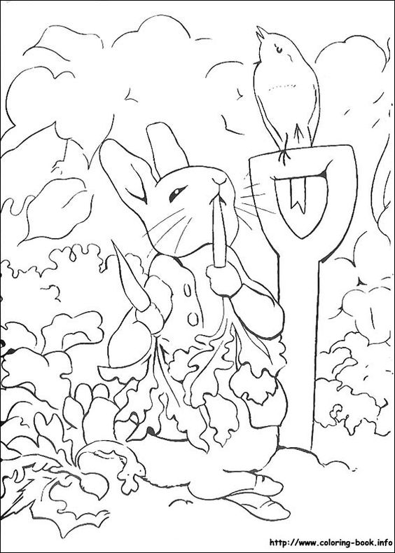 Peter Rabbit coloring picture