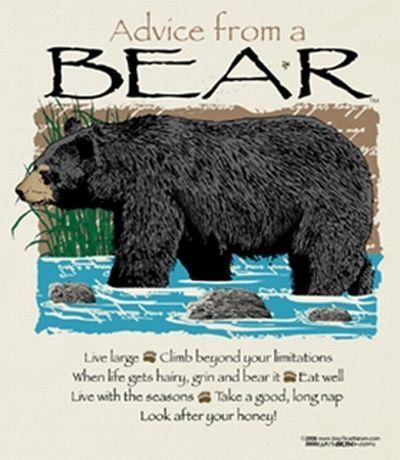 Advice From A Bear T-Shirt T Shirt Tee Nwt