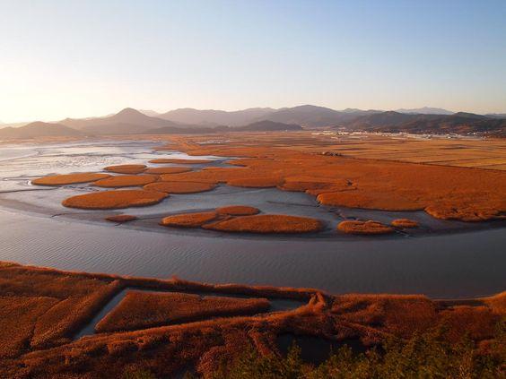Cảnh đẹp nên thơ tại vịnh Suncheon