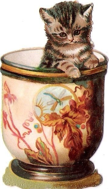 Oblaten Glanzbild scrap die cut chromo Katze cat kitten Tasse cup  Maguire ?: