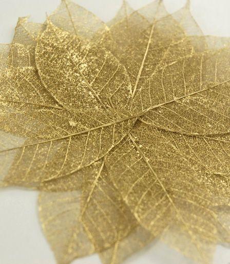 Gold Metallic Skeleton Leaves