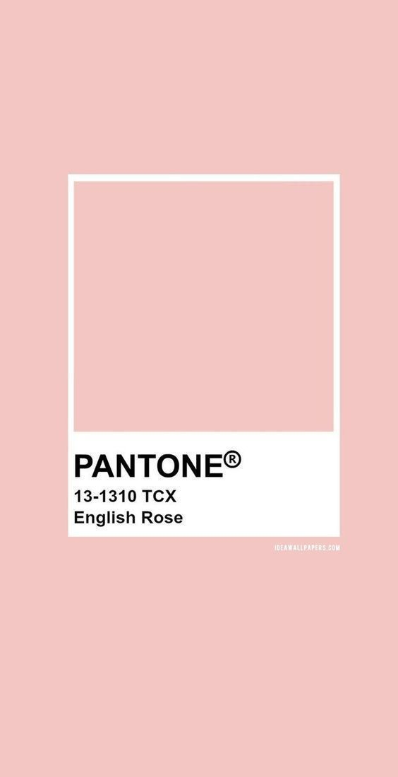 Millennial Pink Vsco Wall Collage Pink Aesthetic Picture Etsy In 2021 Pantone Colour Palettes Pantone Palette Pantone Color Aesthetic pink room paint color