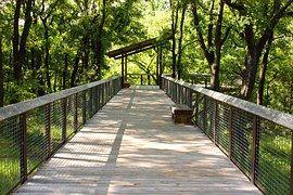 Puente, Naturaleza, Paisaje, Forestales
