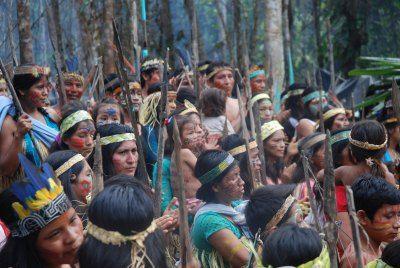 Plaguicidas, Pluspetrol, nombres indígenas, Máximo Damián y otras inf. http://laoropendolasostenible.blogspot.com/2015/02/plaguicidas-pluspetrol-nombres.html