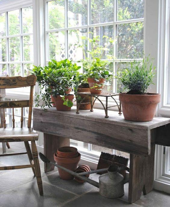 haus mit wintergarten – zimmerpflanzen als dekoration in szene, Gartengerate ideen