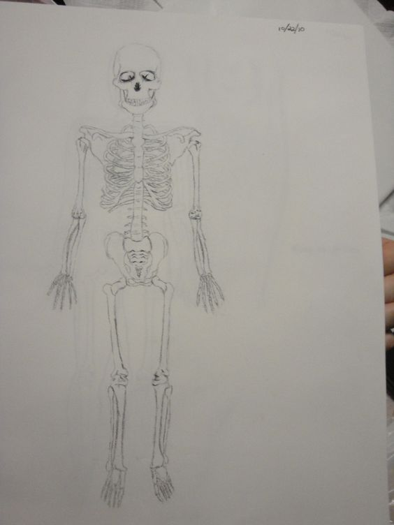 Life Drawing I: Drawings, Art Photography, Life Drawing