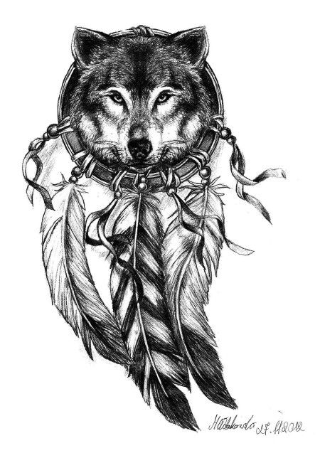 wolf dreamcatcher drawing related - photo #34