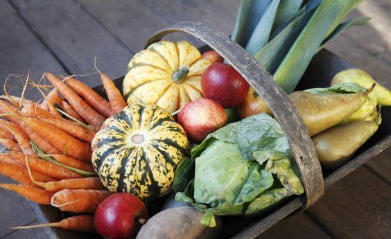 Gemüse-Ernte: So finden Sie den richtigen Zeitpunkt -  Gemüse lässt man am besten an der Pfanze ausreifen. Der richtige Reifegrad und die Tageszeit bei der Ernte sind entscheidend für hohen Vitamingehalt und guten Geschmack. So erkennen Sie den perfekten Erntezeitpunkt.