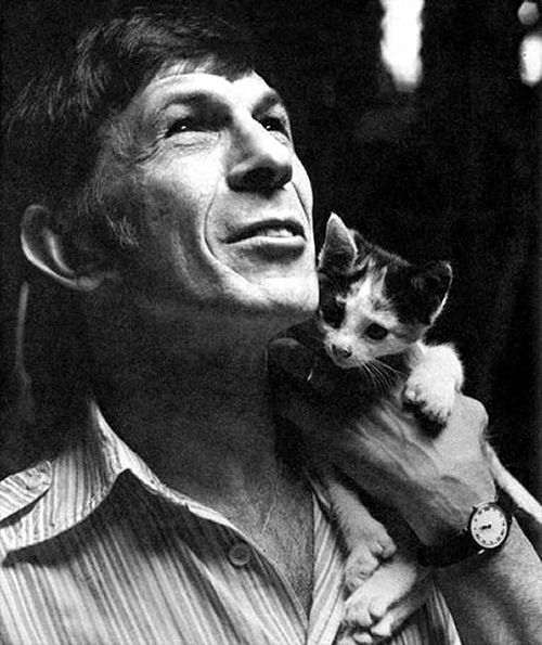 """Leonard Nimoy and little friend.........My caption to this photograph is """"Live long and prosper""""....♥ (A real man loves cats..)."""