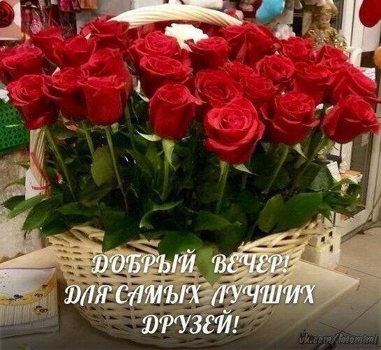 Зинаида Трофимова