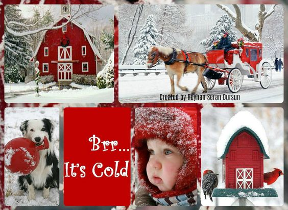 '' Brrr... It's Cold '' by Reyhan Seran Dursun:
