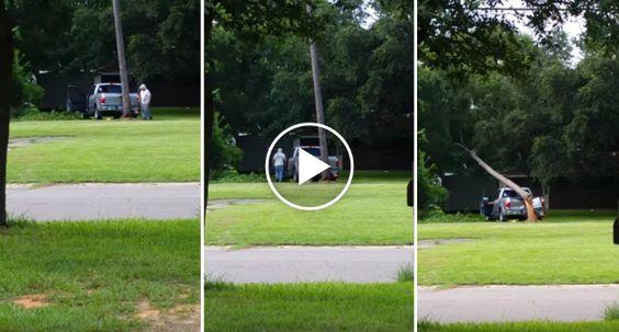 Tentar Derrubar Uma Árvore Com o Veículo Estacionado à Frente Nunca é Boa Ideia http://www.desconcertante.com/tentar-derrubar-uma-arvore-com-o-veiculo-estacionado-frente-nunca-e-boa-ideia/