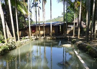 Timor-Leste is putting aquaculture to the forefront of its efforts to combat malnutrition and poverty. (Photo: A small-scale homested fish pond in Same, Timor-Leste. By Jharendu Pant)