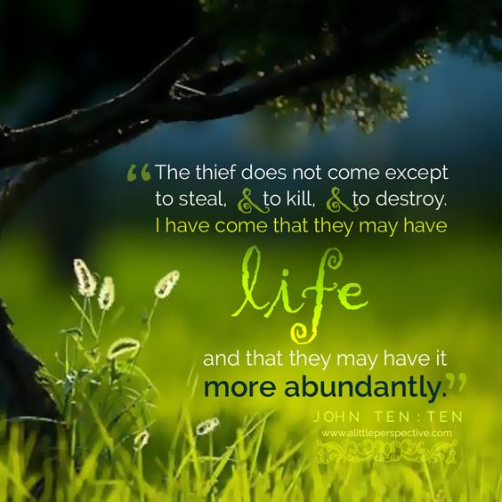 """The thief does not come except to steal, and to kill, and to destroy. I have come that they may have life, and that they may have it more abundantly."" Joh 10:10."