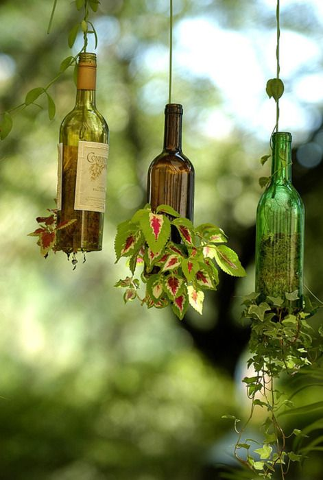 Wine bottles into hanging planters- http://www.ehow.com/how_5802633_hang-plants-glass-bottles.html