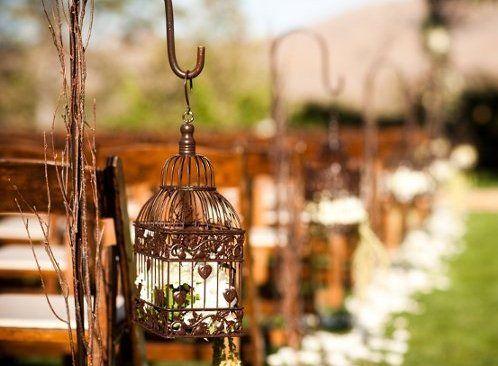 gaiola decorativa
