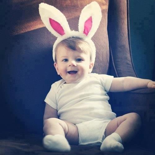 que coelho mais fofo *-*
