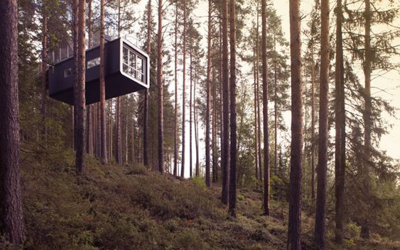 Amazing Treehotels in Sweden – Fubiz Media