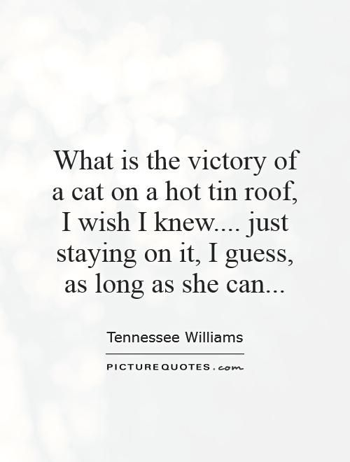 What is the victory of a cat on a hot tin roof,  I wish I knew.... just staying on it, I guess, as long as she can.: