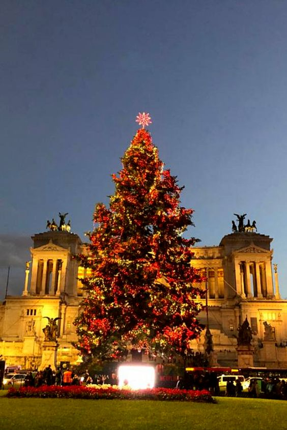 It's beginning to look a lot like Christmas in Rome 🎄 The new @netflix tree is up in Piazza Venezia and it's absolutely beautiful. Have you visited it yet? #iliveitaly #christmas #christmastree #Italy #winter