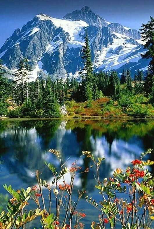 Lake And Mountain View Mountains Amazing Colors Nature Landscape Beautiful Place Greens Blues Nature Beautiful Landscapes Nature Pictures