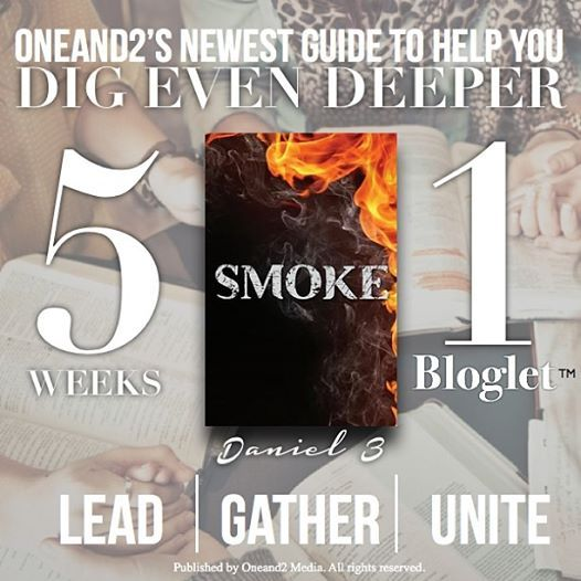 """What will you do in 2014 to go deeper in the word and your walk with God and help those around you? 1 bloglet studied for 5 weeks as you walk through the famous story of those 3 boys in Daniel. Having a study guide for your bible study doesn't get any easier than this! It's time to LEAD, GATHER  UNITE. Find """"Smoke"""" in our shop. #bloglets #oneand2 #deeperin2014"""